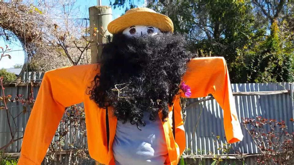 The Dookie Scarecrow Competition