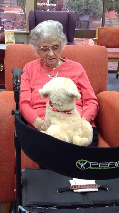 Shepparton Village residents delighted by furry friends